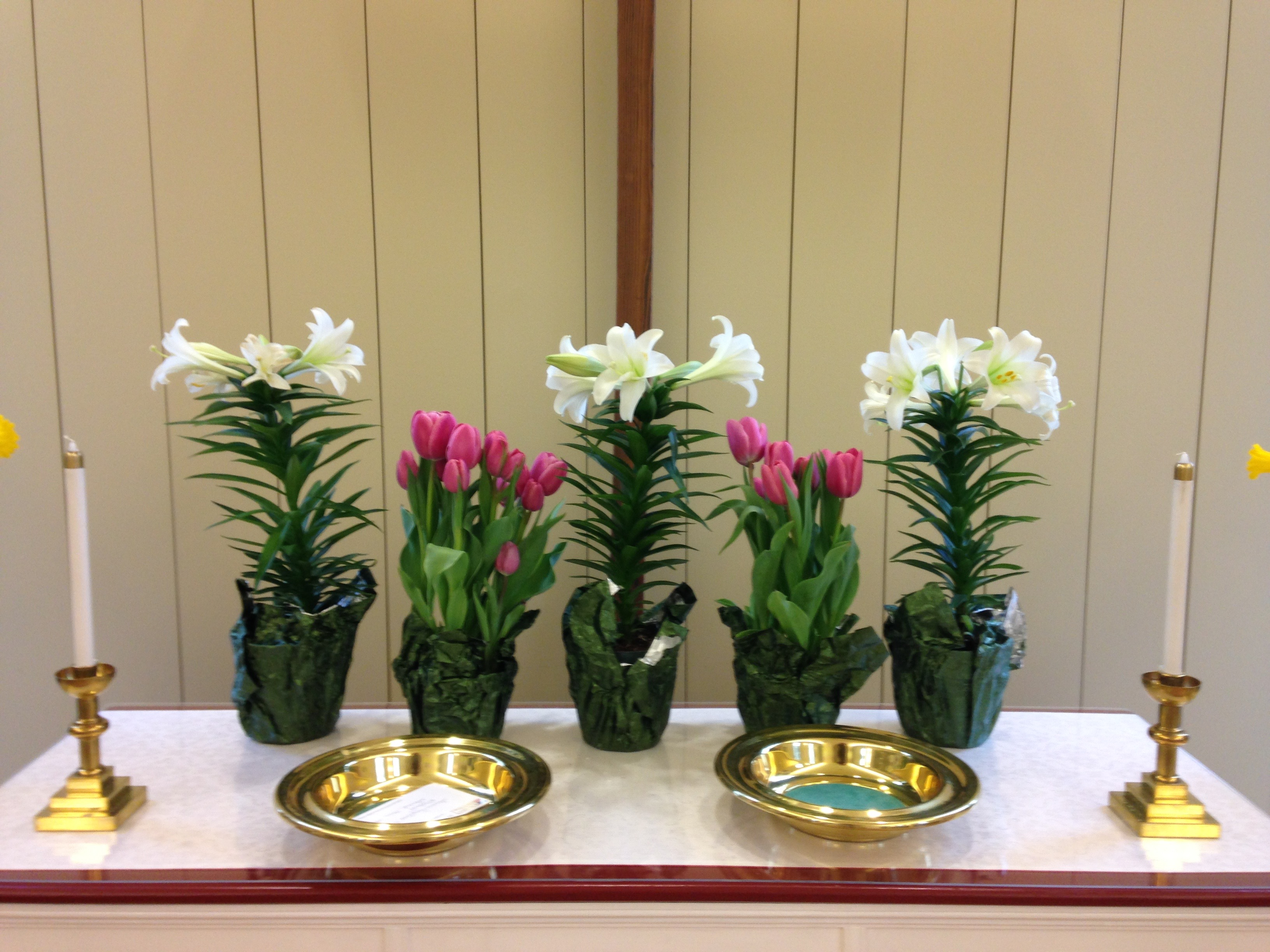 Easter Lillies.JPG